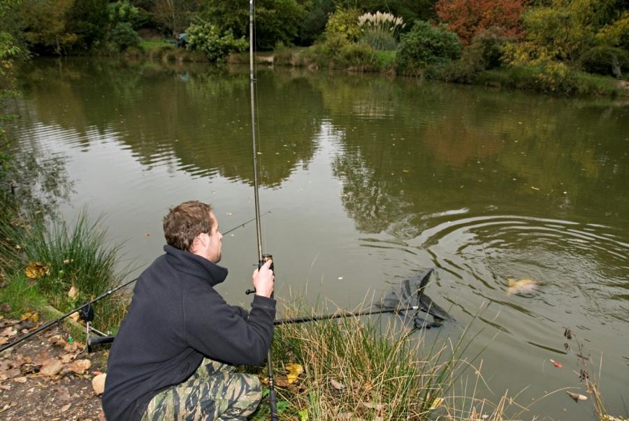 Все о рыбалке — как ловить, где ловить и на что